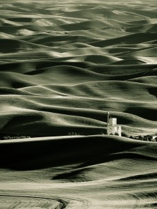 Dave Wilson - Rolling Palouse Hills (FIRST PLACE)