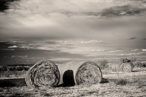 Janis Cowell - Hay bales (SECOND PLACE)